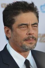 Benicio del Toro birthday