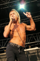 Iggy Pop birthday