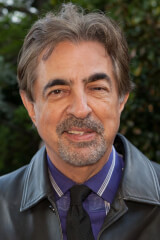 Joe Mantegna birthday